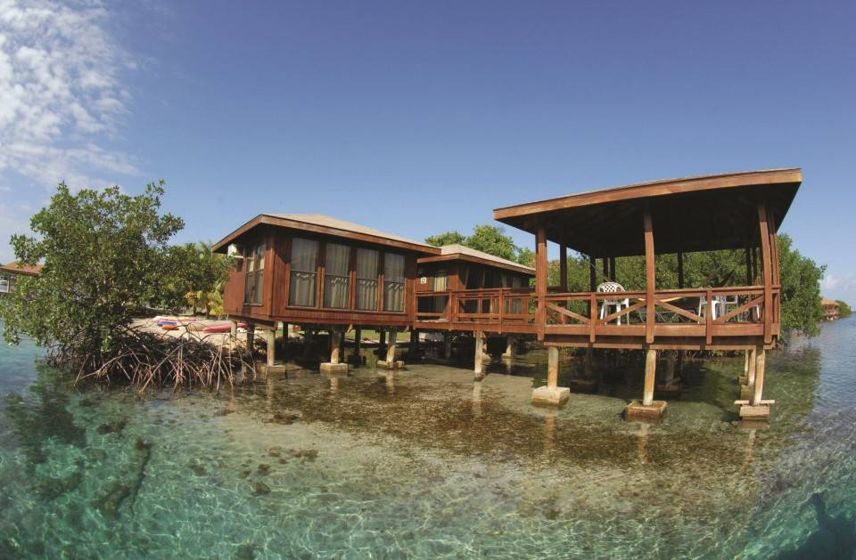 Honduras_duiken_Anthoneys_key_resort_Roatan_bungalow