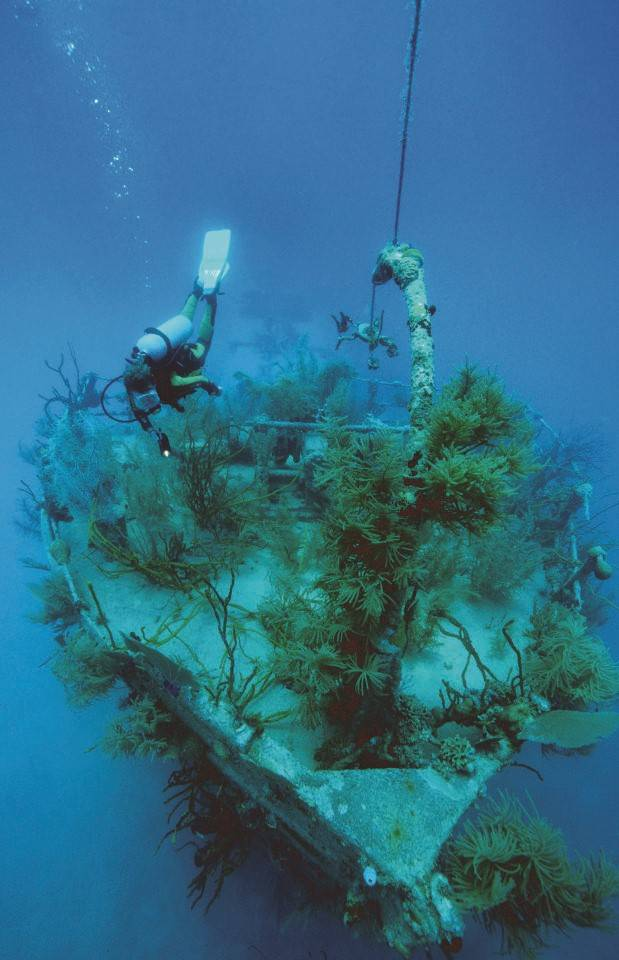 Honduras_duiken_Anthoneys_key_resort_roatan_Dive_scuba_Wreck Prince Albert
